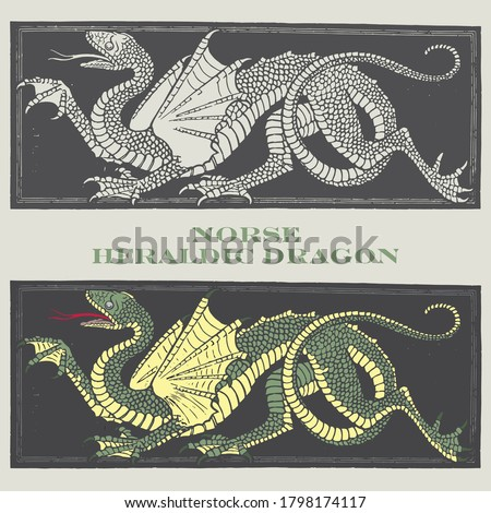norse heraldic dragon  vector