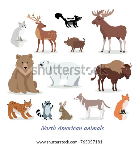 north american animals cartoon