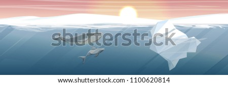 northern underwater landscape