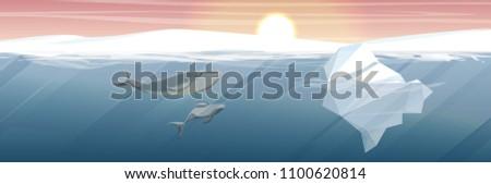 northern underwater landscape