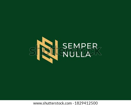 NS or SN. Monogram of Two letters N&S or S&N. Luxury, simple, minimal and elegant NS, SN logo design. Vector illustration template. Stock fotó ©
