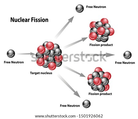 Nuclear energy diagram of nuclear fission reaction. Free neutron, target nucleus, fission product, chain releasing energy.
