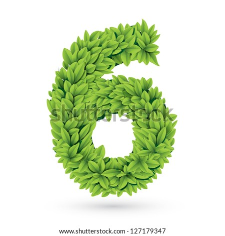 Number of green leaves vector illustration