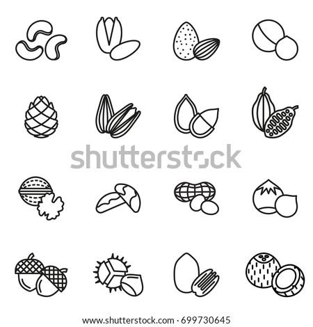 Nut icons Set. Line Style stock vector. Сток-фото ©