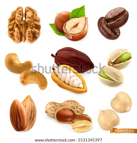 Nuts and beans. Walnut, hazelnut, coffee, cashew, cocoa, pistachio, almond, peanut, chickpea. Miscellaneous 3d realistic vector objects. Food icon set