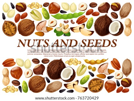 Nuts and fruit seeds or beans poster. Vector peanut or coconut and hazelnut, pistachio or almond walnut and legume bean pod, macadamia or filbert nut and pumpkin or sunflower seeds and coffee bean #763720429