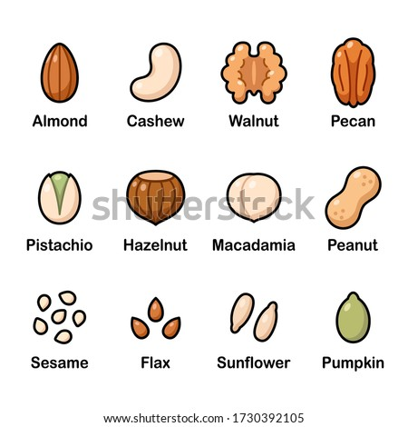 Nuts and seeds icon set. Cartoon color icons, isolated vector clip art illustration. Foto d'archivio ©