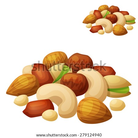 Nuts isolated on white background. Cartoon Vector Icon. Series of food and drink and ingredients for cooking.