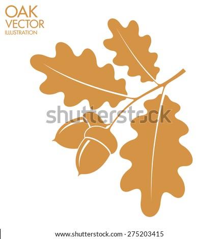 Oak. Branch. Vector illustration