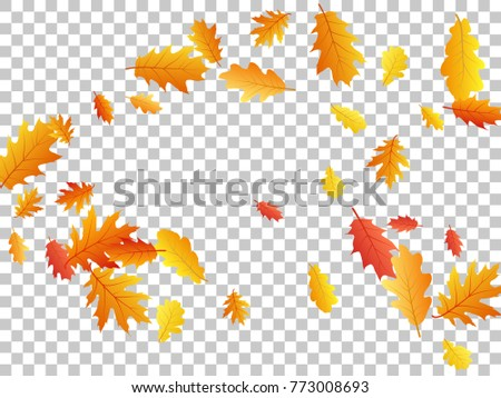 oak leaf abstract background