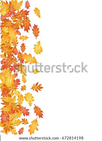 Oak leaf vector left side border illustration with white background. Autumn foliage, seasonal image. Red, yellow, orange and brown dry oak tree leaves background pattern.