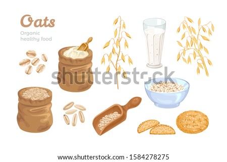 Oats set. Bag of oat flour, sack of grains, wooden scoop with cereals, golden ears of corn, oat milk and cookies. Oat flakes and bowl with oatmeal. Organic food Vector illustration. Cartoon flat style Stock photo ©