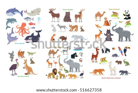 Ocean animals. Forest animals. Asian animals. Australian animals. African animals. South american animals. Set of vector cartoon creatures from doffernt continents. Illustrations in flat style