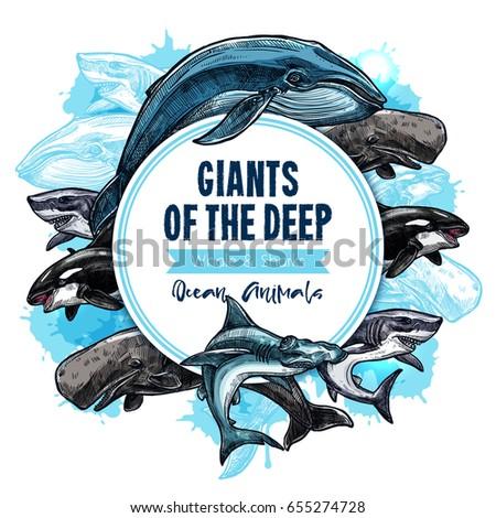 ocean animals or deep water