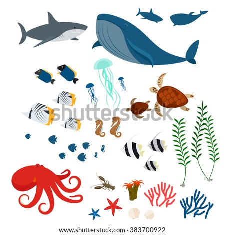 ocean animals  sea fauna and