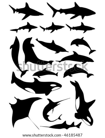 ocean animals images. stock vector : Ocean animals