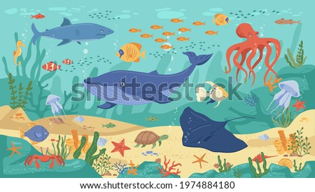 Ocean animals, underwater life, coral reefs and seaweeds, flat cartoon background Vector childish kids marine creatures. Algae and seashells, shark, turtle, squid and clown fish, jellyfish and whale