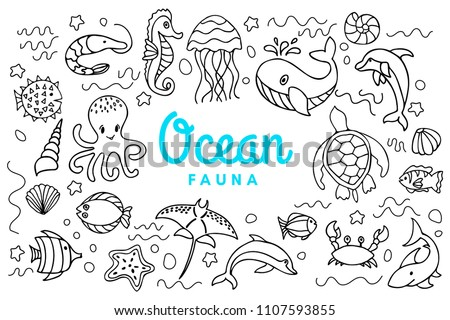 Ocean fauna cute cartoon doodle set. Aquatic sea fauna. Vector under water inhabitants life. Octopus, whale, turtle, dolphin, seahorse, crab, shark, etc aquatic underwater animals
