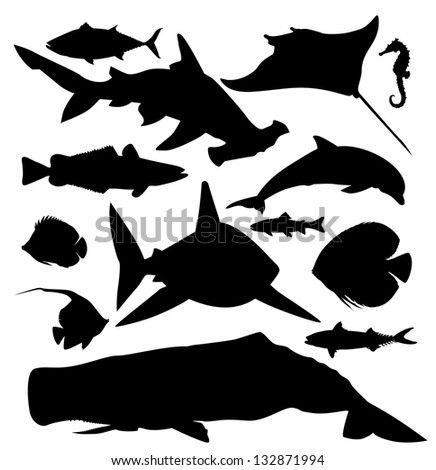 ocean fish vector silhouette - stock vector