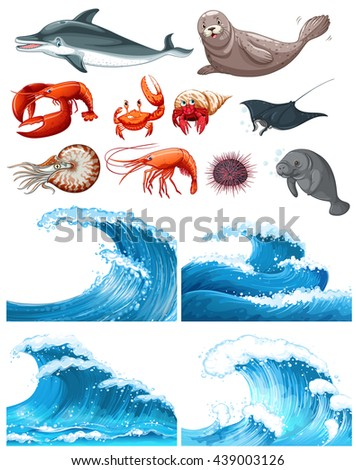 ocean waves and sea animals