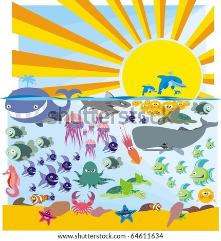Ocean wildlife colorful vector image collection
