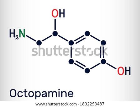 Octopamine molecule. It is biogenic phenylethanolamine, sympathomimetic drug. Skeletal chemical formula. Vector illustration