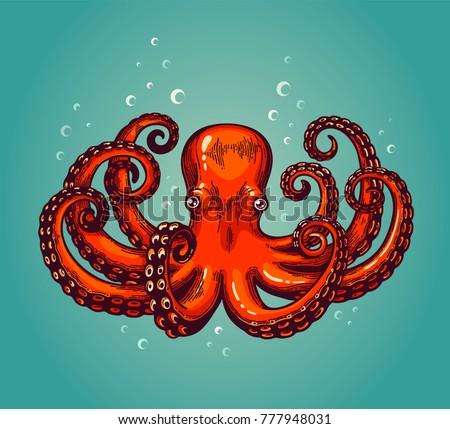 octopus engraving vintage