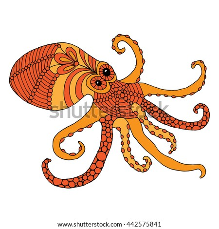 octopus illustration    octopus