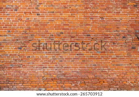 old brick wall texture. vector.
