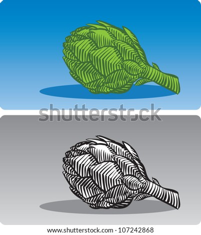 Old fashioned etched style illustration of a raw artichoke, in color and black and white.