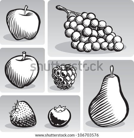 Old fashioned etched style illustration of some common fruit, presented individually, in black and white.
