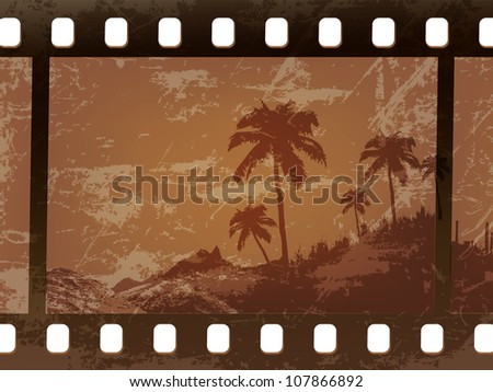 old palm trees frame the film, the film worn