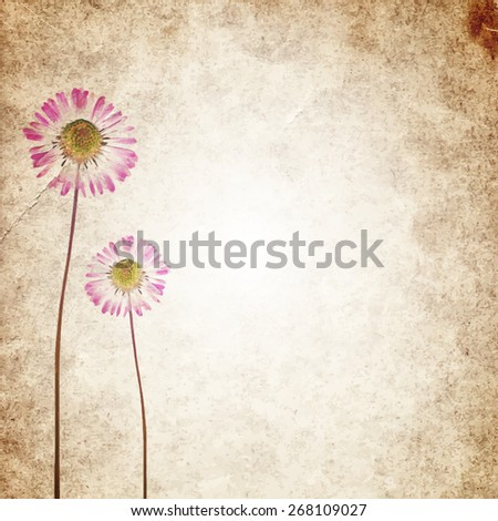 Old vintage paper texture background with dry flowers. EPS10 vector illustration