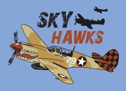 old world war sky plane