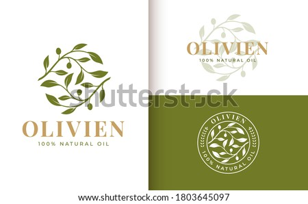 olive branch logo design with 3 options