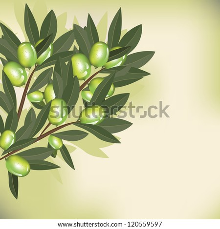 Olive branch with leaves on old paper background
