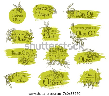 Olive oil bottle with olive branch sketch symbol set. Natural organic olive product isolated vector label of extra virgin oil in jug with fruit and leaf for italian, portuguese, turkish cuisine design