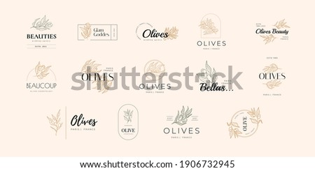 Olive oil Vector Signs or Logo Templates. Retro Floral Illustration with Classy Typography. Feminine Logo. Modern Logo Template for florist, photographer, fashion blogger, design studio.