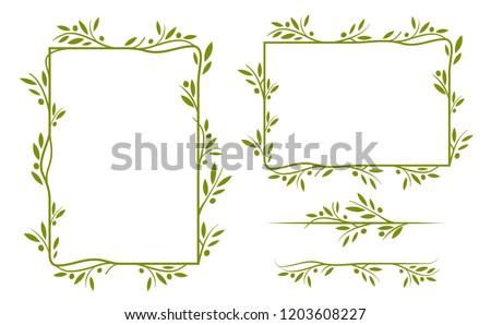 olive tree border vector