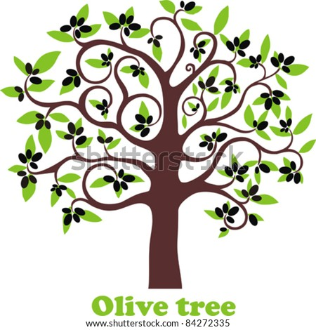 Olive tree full of black olives isolated on white background. Vector Illustration