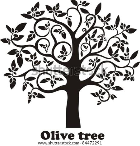 Olive Tree Full Of Black Olives Isolated On White ...