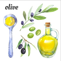 Olives and a bottle of olive oil. Mediterranean products. Vector watercolor food. Illustration in painting technique.