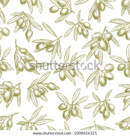 Olives seamless pattern of vector sketch olive branches and fruits. Tracery of green olives harvest for Italian cuisine design or extra virgin oil food or cosmetic product packaging wrapper