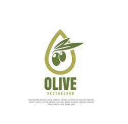 Olives, vegetable oil, healthy food. Vector illustration