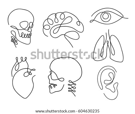 One line human organs set design silhouette.Logo design. Hand drawn minimalism style vector illustration.
