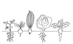 One lines drawing vector ripe vegetables set, black and white sketch of a family of plants growing in the ground, isolated on a white background. Edible harvest one line hand drawn illustration