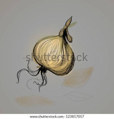Onion / Vector sketch of vegetable