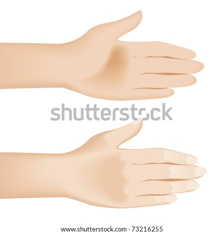 Open hands isolated on white. Illustration on white background - stock vector