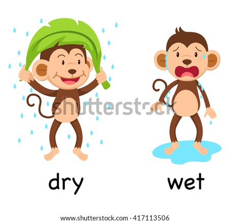 Opposite words dry and wet vector illustration