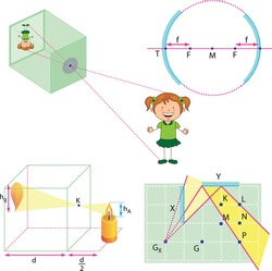 Optics, reflection lesson forms, Light Reflection infographic diagram with example of light source where incoming rays reflected on a smooth shiny mirror surface for physics science education